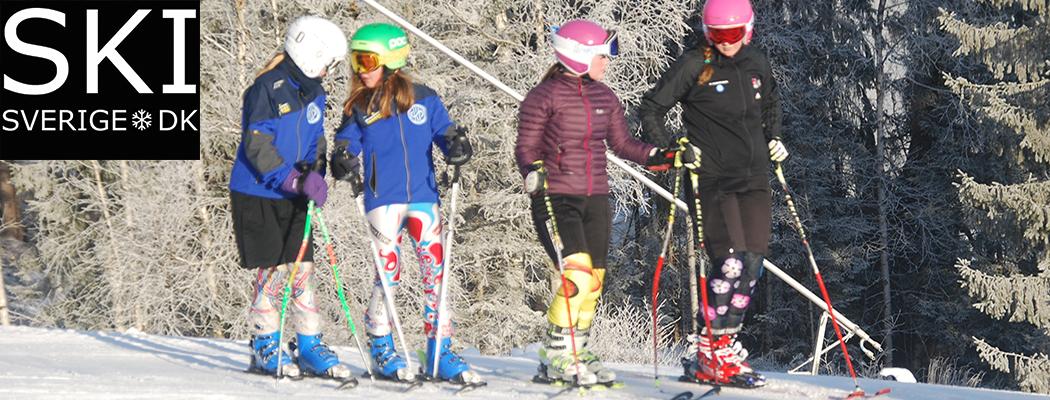 Få 20 procent rabat via SkiSverige